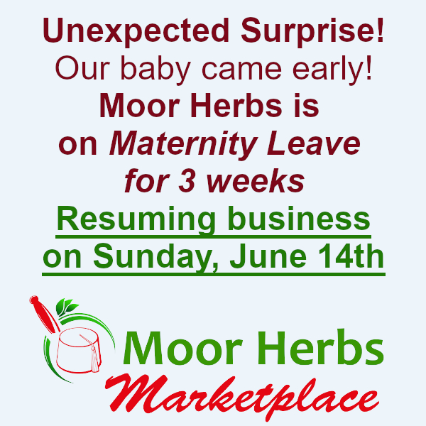 Maria LeMay-Bey and Isaiah Orton-Bey on maternity leave