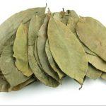 sour-sop-leaves